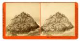 Seal Rocks from Sugar Loaf Islands