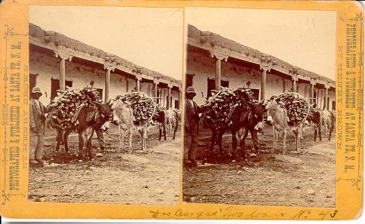 New Mexico 171 Jeffrey Kraus Antique Photographics